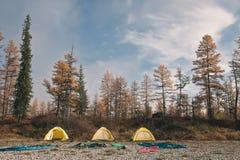 Желтый шатер на банках сибирских рек taiga Стоковые Изображения RF