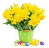Желтый narcissus весны стоковое изображение rf