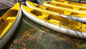 Желтый rowing шлюпки Стоковая Фотография