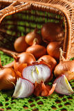 Желтый vegetable лук отрезанный в половине Стоковые Фото