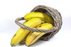 4 желтых банана в переворачиванной плетеной корзине Стоковое Изображение