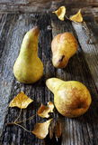 3 желтых груши и листь осени Стоковое Фото