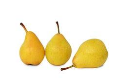 3 желтых груши на белизне Стоковая Фотография