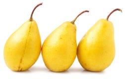 3 желтых груши на белой предпосылке Стоковое Изображение