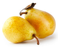 2 желтых груши с лист Стоковая Фотография RF