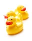 3 желтых игрушки утки Стоковое Изображение