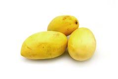 3 желтых манго Стоковая Фотография