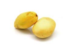 2 желтых манго Стоковое Фото