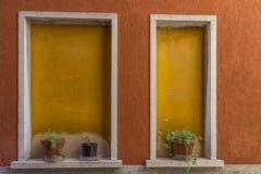 2 желтых окна Стоковые Изображения RF