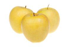 3 желтых плодоовощ очень вкусных яблока, изолированного на белой предпосылке Стоковые Фото