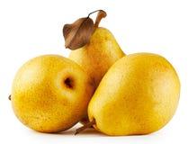 3 желтых сочных груши Стоковое Изображение