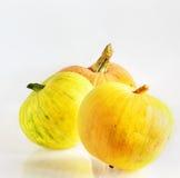 3 желтых тыквы Стоковое Изображение RF