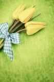 Тюльпаны пасхи Стоковое фото RF