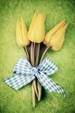 Тюльпаны пасхи Стоковые Изображения