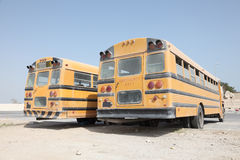 2 желтых школьного автобуса Стоковая Фотография