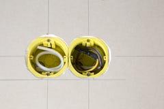2 желтых электрических гнезда Стоковое Фото