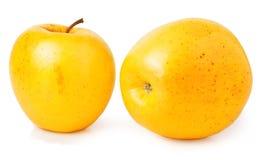 2 желтых яблока на белой предпосылке Стоковые Фотографии RF
