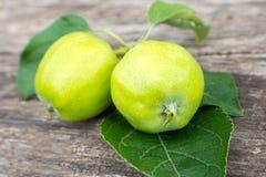 2 желтых яблока с листьями на деревянном столе Стоковые Фото