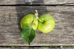 2 желтых яблока с листьями на деревянном столе Стоковое фото RF