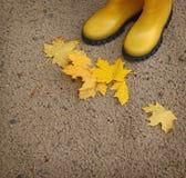 2 желтых gumboots и упаденных желтых листья Стоковые Фотографии RF