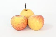Желт-красное яблоко на белой предпосылке Стоковая Фотография