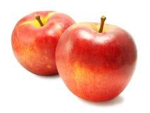 2 желт-красных сладостных яблока Стоковое фото RF