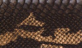 Желт-черная текстура кожи Стоковое фото RF