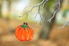 Живая осень в парке Стоковые Фото
