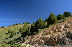 Живая перспектива вдоль Byway каньона Logan сценарного Стоковые Изображения RF