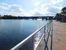 Живая природа Мельбурна, Флориды Стоковое Изображение