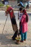 Живите в Непале - улицах Катманду стоковое изображение