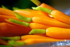 живое морковей миниатюрное Стоковые Фотографии RF