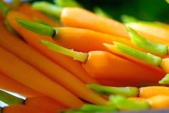 живое морковей миниатюрное Стоковая Фотография RF