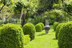 Живой зеленый английский сад с цветками лета Стоковая Фотография RF