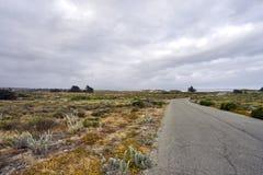 Живописная дезертированная дорога через дюны к Тихому океану Стоковое Изображение