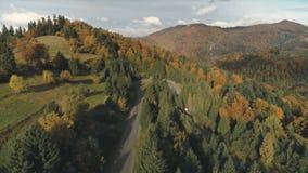 Живописная извилистая дорога среди толстых лесов и лугов акции видеоматериалы
