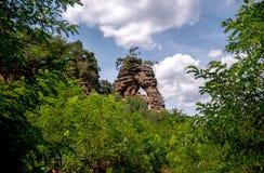 Живописное дерево поверх скалы стоковые фотографии rf