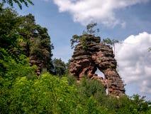 Живописное дерево поверх скалы стоковые изображения rf