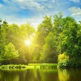 Живописное озеро, лес лета на банках и восход солнца стоковая фотография rf
