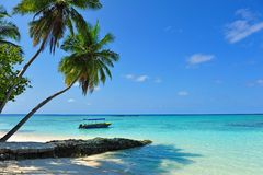 Живописное ясное море окружая мальдивский остров Стоковые Фотографии RF