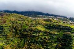 Живописные и величественные зеленые горы Мадейры, Португалии Стоковые Фото