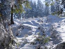 Живописные ландшафты зимы ландшафтов горы в солнечном свете стоковые фото