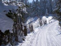 Живописные ландшафты зимы ландшафтов горы в солнечном свете стоковое фото rf