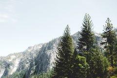 Живописные ландшафты осени национального парка Yosemite, США Стоковое Изображение