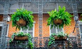 Живописные частные дома в французском квартале Решетка балкона и ковки чугуна Традиционная архитектура старого Нового Орлеана Стоковое фото RF