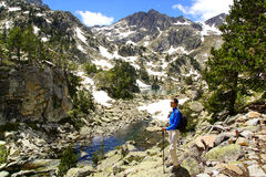 Живописный ландшафт природы с озером Стоковые Изображения RF