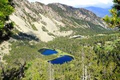 Живописный ландшафт природы с озером Стоковое Изображение RF
