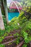 Живописный ландшафт пути в лесе с взглядом красного br свода Стоковое фото RF