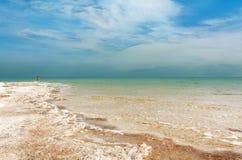 Живописный бечевник мертвого моря стоковая фотография rf