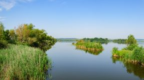 Живописный вид на озеро в зеленом цвете стоковое фото rf